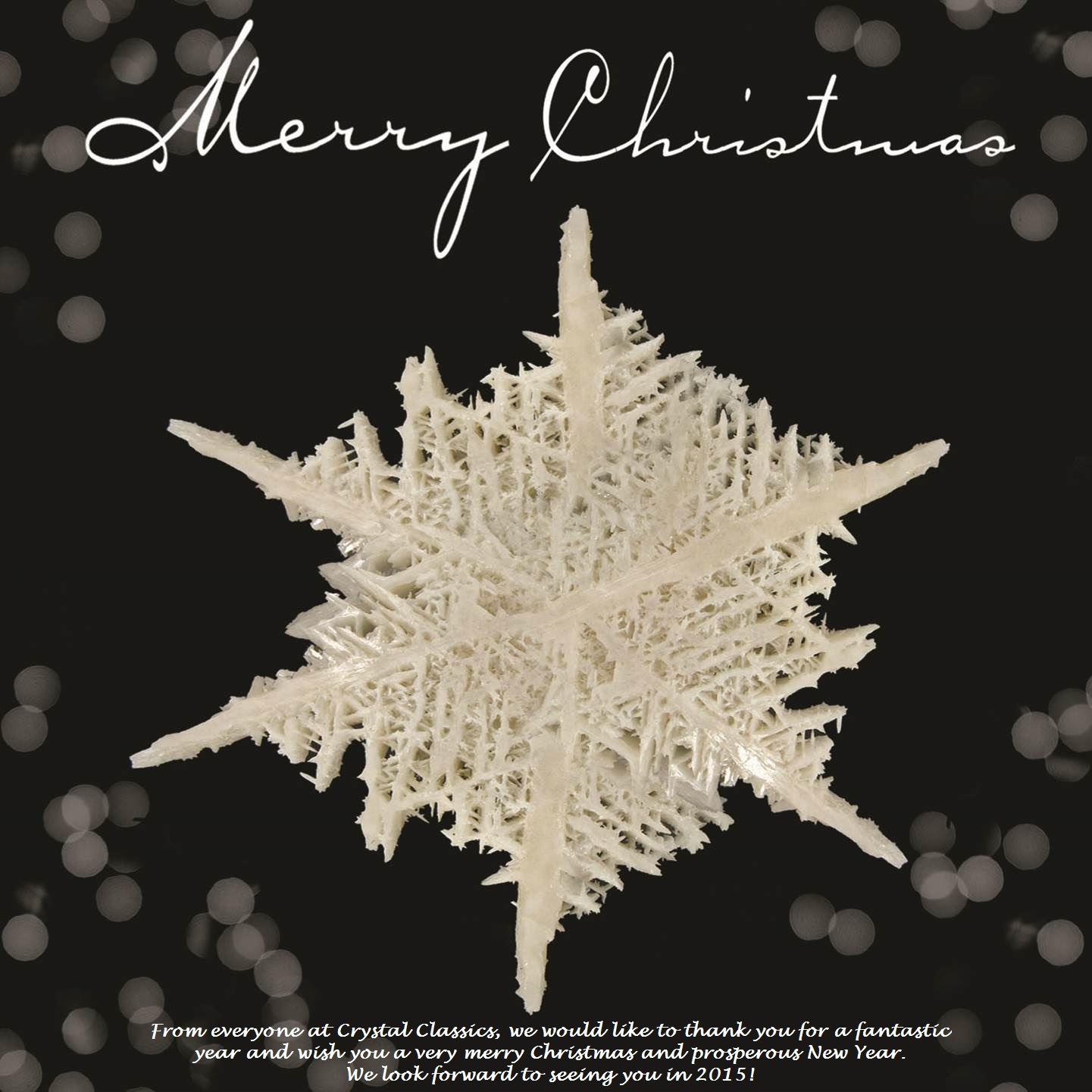 Wishing Everyone a Very Merry Christmas and Prosperous New Year