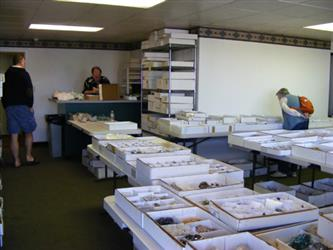 Tucson Mineral Shows 2011 - First report