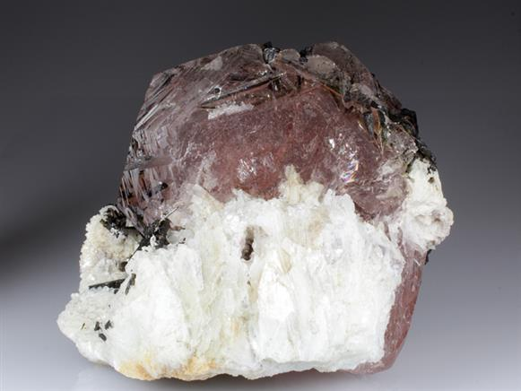 Beryl Var. Morganite With Tourmaline