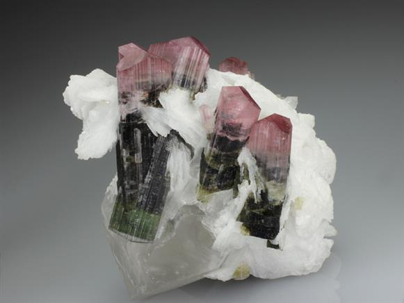 Elbaite Tourmaline With Cleavelandite and Quartz