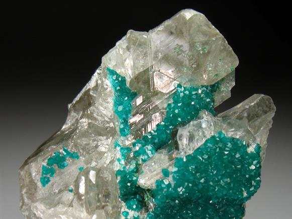Dioptase on Cerussite