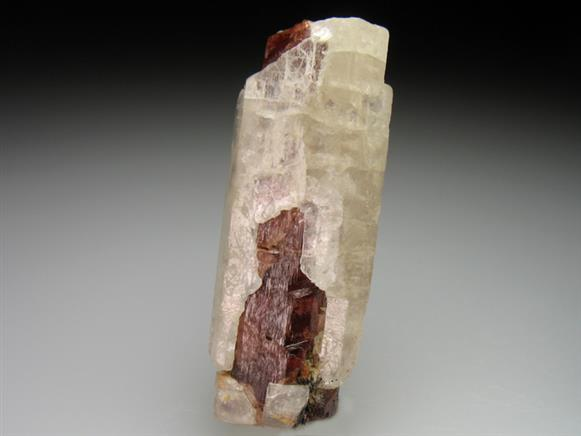 Spessartine Garnet Overgrown By Fluorapatite