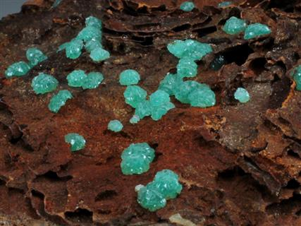Cuprian Adamite on Goethite