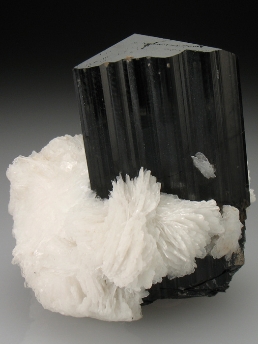 Tourmaline Var Schorl With Cleavelandite