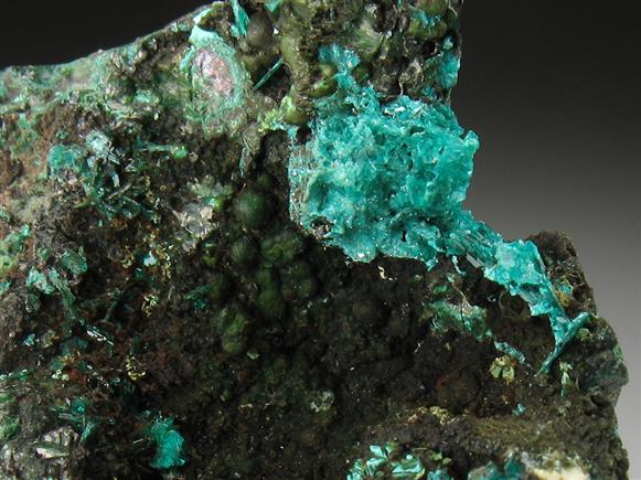 Chalcophyllite on Chrysocolla