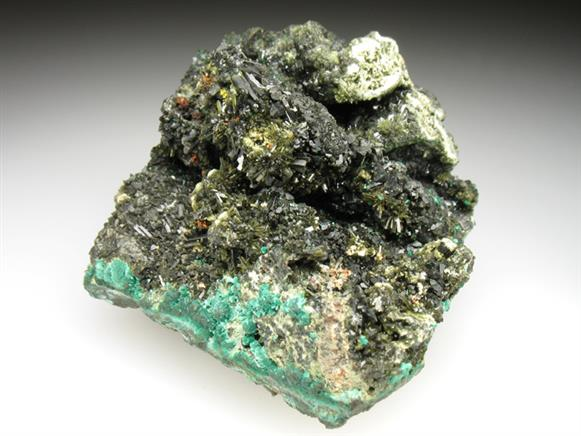 Olivenite on Malachite