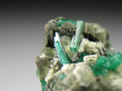 Cuprian Adamite on Olivenite