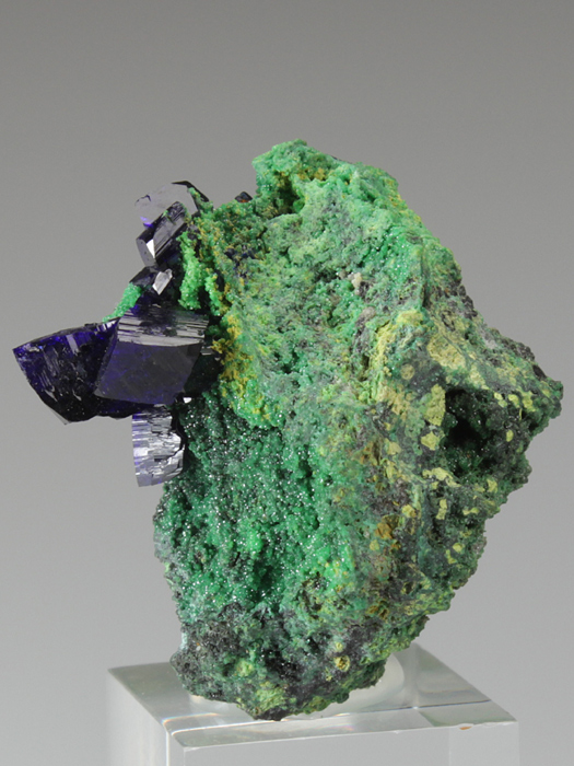 Azurite on Cuprian Adamite With 'Gartrellite'