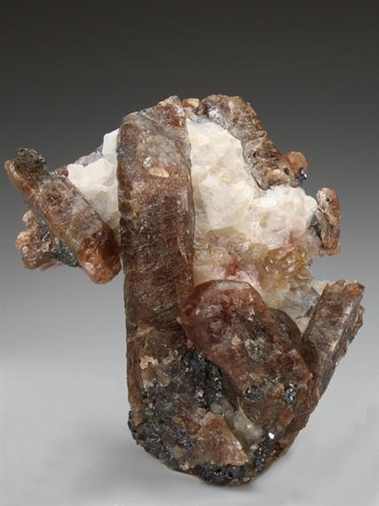 Bustamite In Calcite