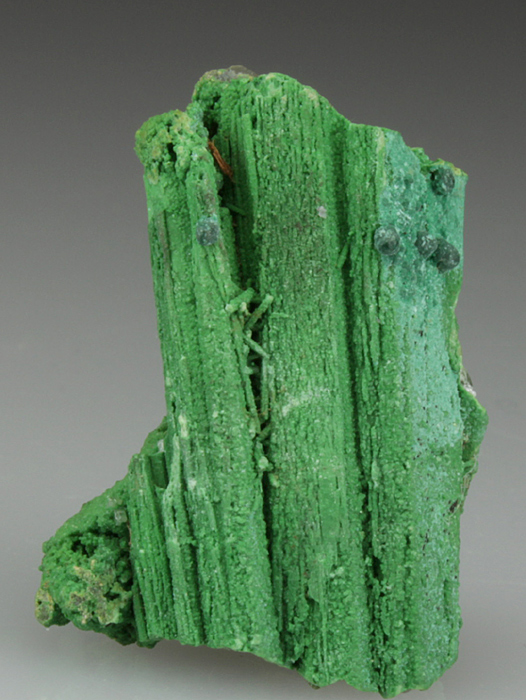 Bayldonite Pseudomorph After Mimetite