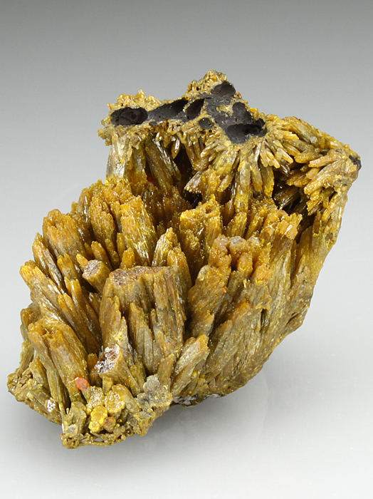 Pyromorphite With Wulfenite