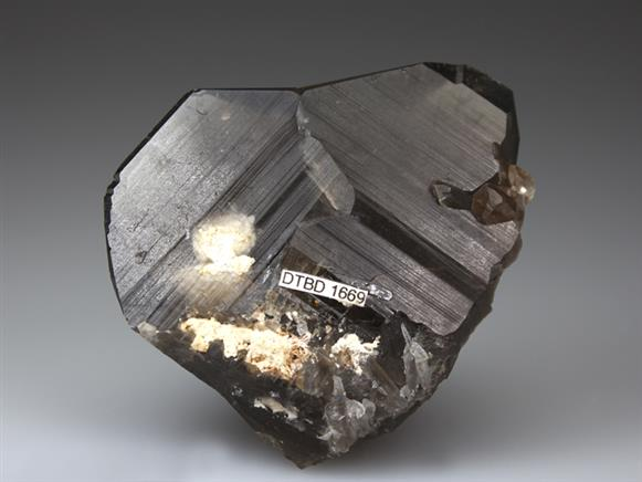 Smoky Quartz, Japan Law Twin