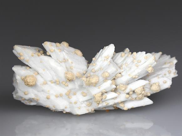 Calcite Pseudomorph After Gypsum With Siderite
