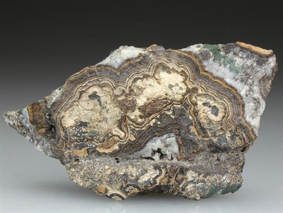 Cassiterite Var Toad's Eye Tin