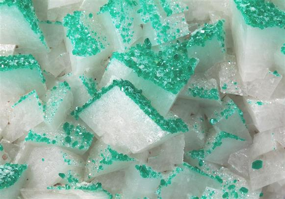 Calcite Preferentially Coated By Dioptase