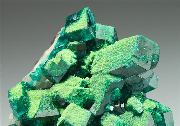 Conichalcite With Dioptase