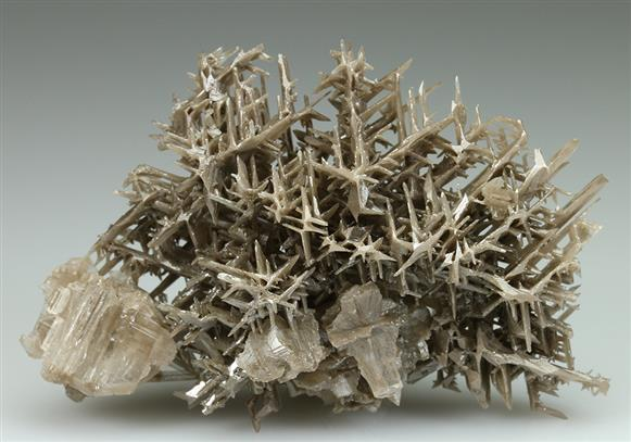 Cerussite Reticulated Habit