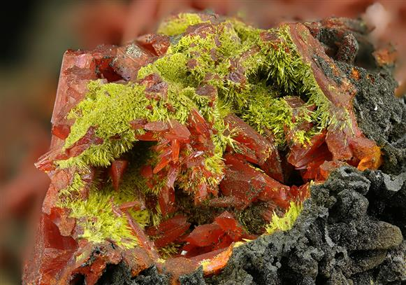 Crocoite With Pyromorphite and Vauquelinite