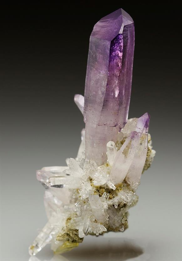 Amethyst Sceptered Quartz