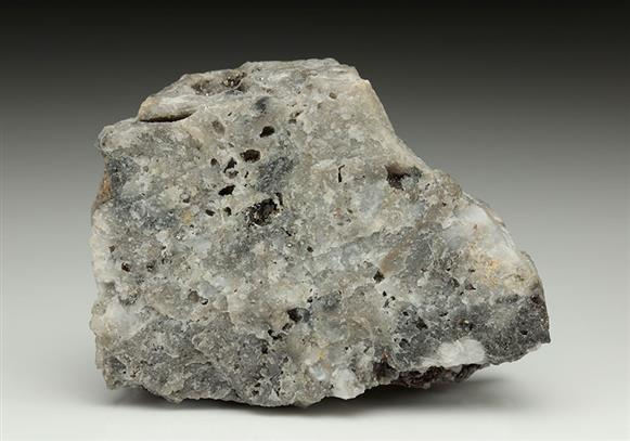 Native Tellurium With Pyrite on Quartz