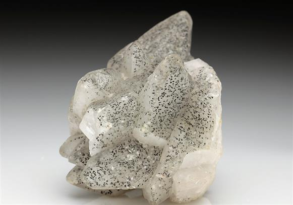 Calcite Included By Pyrite-marcasite