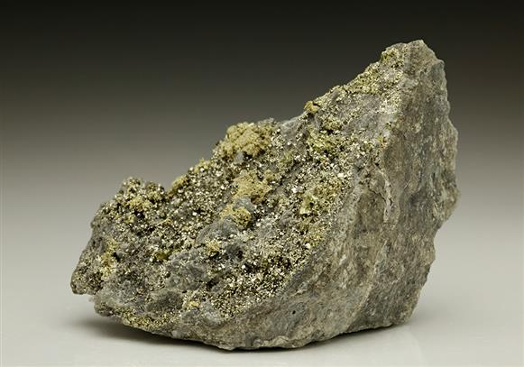Native Gold With Pyrite
