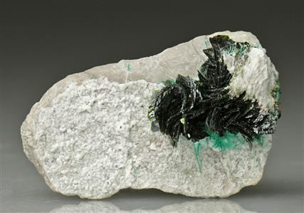 Volborthite with Brochantite