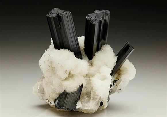 Schorl Tourmaline with Albite and Quartz