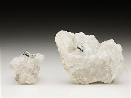 Cosalite in Quartz