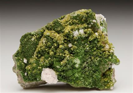Cadmium enriched Willemite with Cuprian Adamite