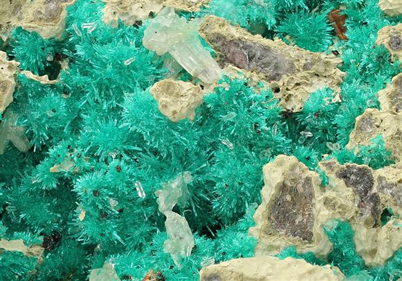 Dioptase with Wulfenite and Mottramite