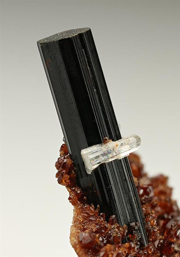 Vesuvianite with Grossular and Diopside