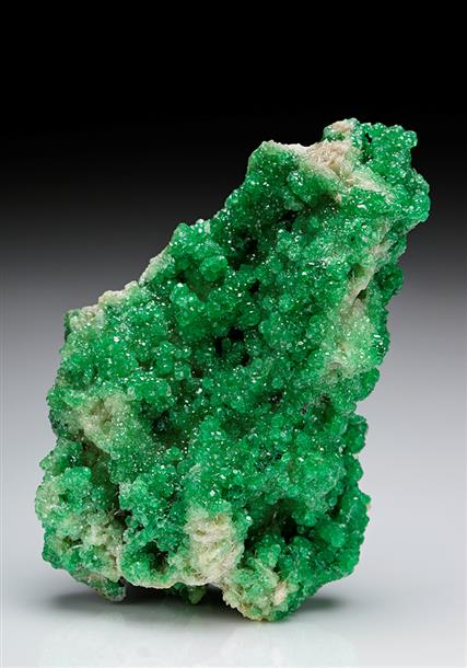 Chromium enriched Grossular with Diopside.