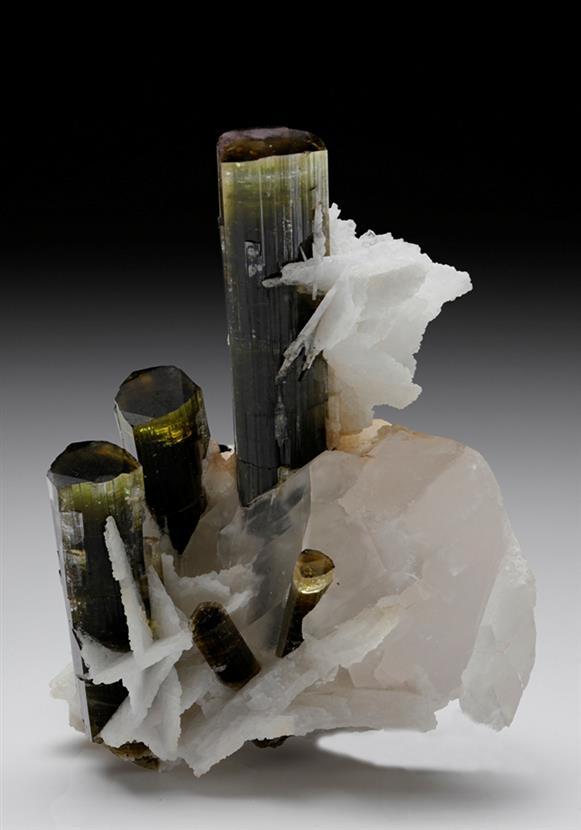 Elbaite Tourmaline with Albite and Quartz