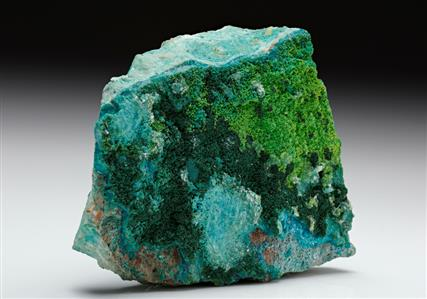 Volborthite with Malachite on Chrysocolla.