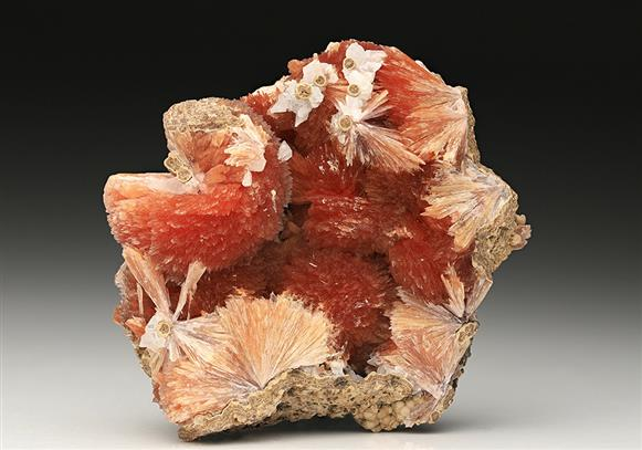 Inesite with Orlymanite