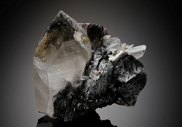Scheelite with Wolframite on Quartz