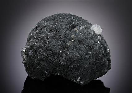 Boulangerite included Calcite