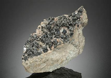 Freieslebenite with Pyrargyrite and Freibergite
