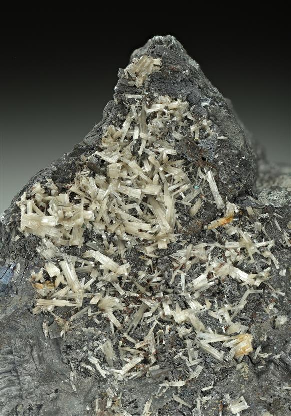 Valentinite with Galena