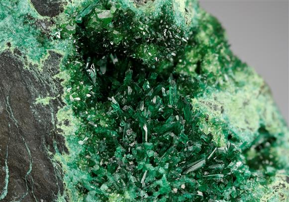 Zincolivenite with Cuprian Adamite