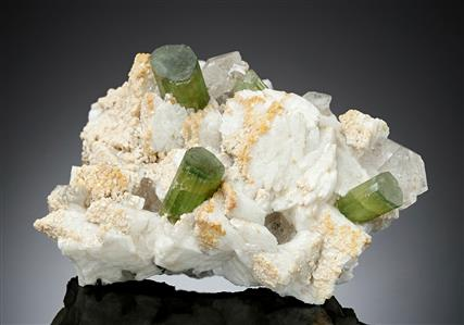 Tourmaline with Albite and Quartz
