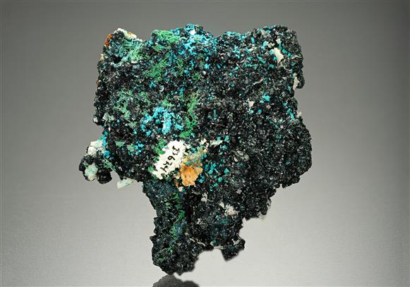 Clinoclase with Liroconite and Cornwallite