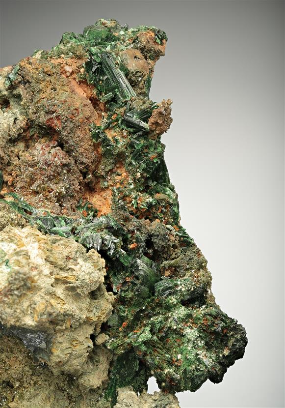 Szenicsite with Powellite and Molybdenite
