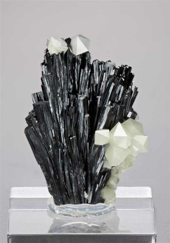 Ilvaite with Quartz