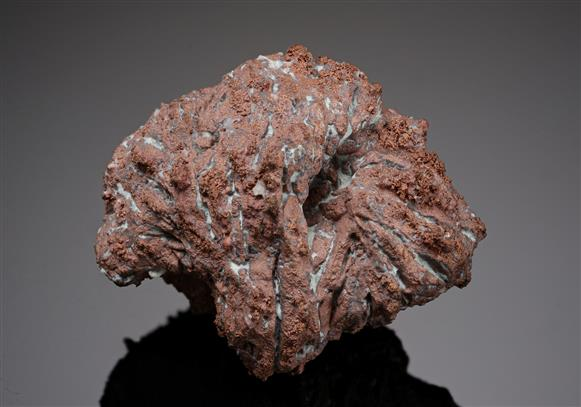 Native Copper rose pseudomorph after Azurite