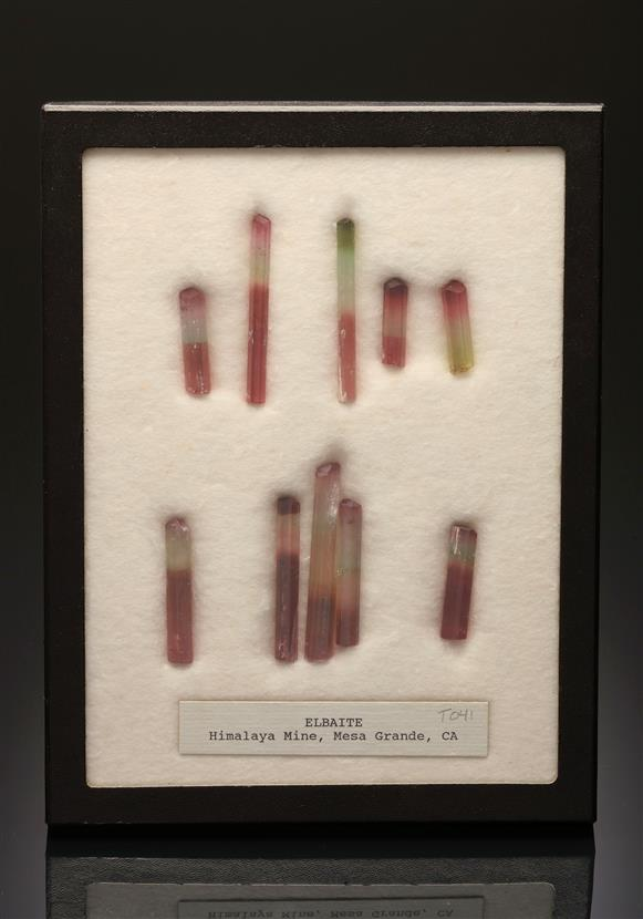 Elbaite (Tourmaline Group) 10 crystal display set