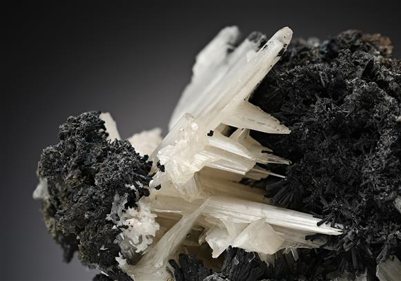 Cerussite with Pyromorphite