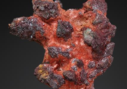 Cuprite var. Chalcotrichite on Native Copper