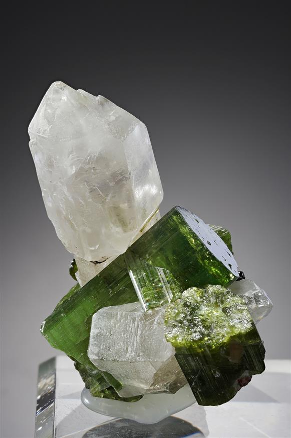 Sceptre Quartz with Tourmaline